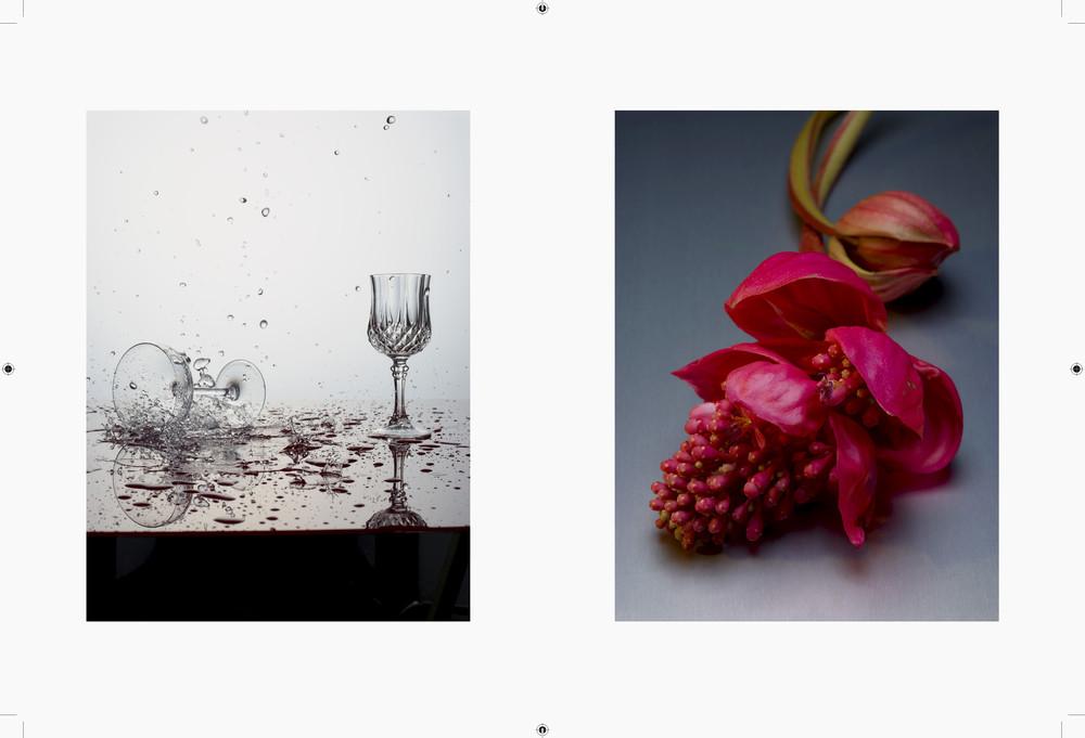 Negre Briere - © Rémy Briere