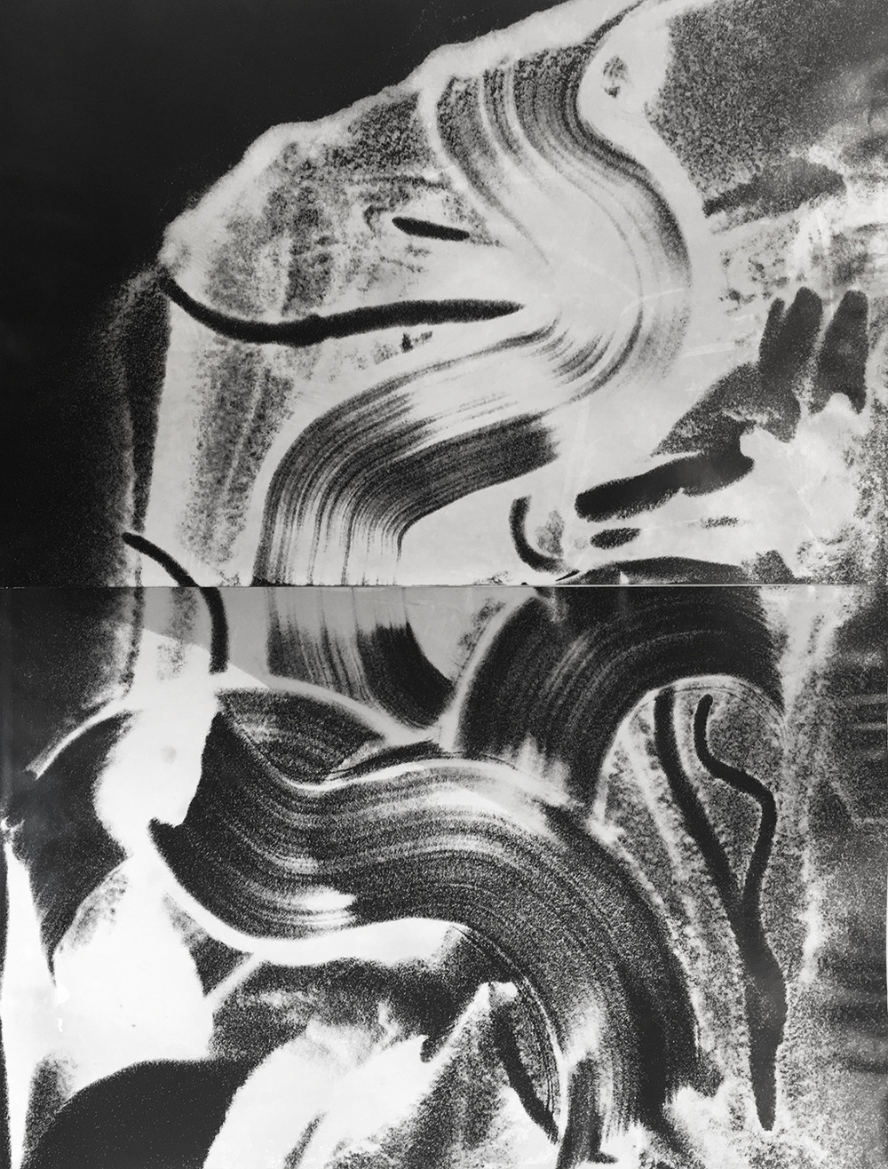 Photograms - © Rémy Briere